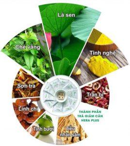 hera giảm cân, giảm cân hera có an toàn không, tác hại của thuốc giảm cân hera, thuốc giảm cân hera dạng viên, trà thảo mộc giảm cân hera, hera thảo mộc giảm cân, trà thảo mộc hera, giảm cân hera dạng viên, trà giảm cân hera lừa đảo, tác hại của thuốc giảm cân hera, giảm cân hera plus, thuốc giảm cân hera dạng viên, viên uống giảm cân hera, giảm cân hera dạng viên, review thuốc giảm cân hera, thuốc giảm cân hera plus, trà giảm cân hera plus, giảm cân hera plus dạng viên, trà giảm cân hera plus có tốt không, trà giảm cân hera plus giá bao nhiêu, viên giảm cân hera plus, viên giảm cân hera có tốt không, thảo mộc giảm cân hera giá bao nhiêu, trà thảo mộc giảm cân hera plus, thảo mộc giảm cân hera plus, thảo mộc hera giảm cân, trà giảm cân thảo mộc hera, giảm cân hera chính hãng, giảm cân hera hàn quốc, thuốc giảm cân thảo mộc hera, trà thảo mộc hera plus, giảm cân hera giá bao nhiêu, trà thảo mộc thiên nhiên hera